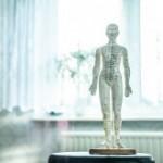 Ostéopathe Neuvy-le-Roi