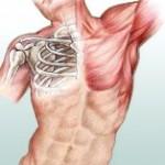 Ostéopathe Trélivan