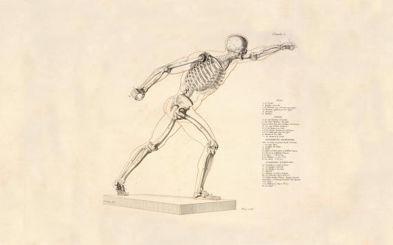 Ostéopathe - Olby - Charles Cohendy